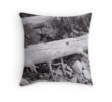 Cedar...Mackay Harbour Throw Pillow