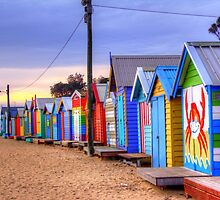Bathing Boxws at Sunset by Leonie Morris