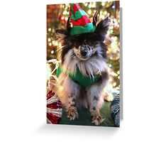 The Elf Greeting Card