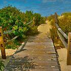 Board walk by DonaldCole