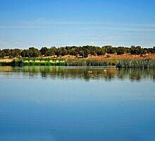 Pintale Lake by George I. Davidson
