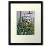Yellow Venom Framed Print