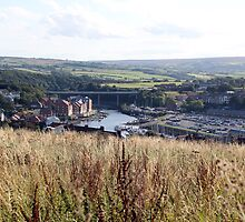View from Caedmon's Trod, Whitby by Jervaulx