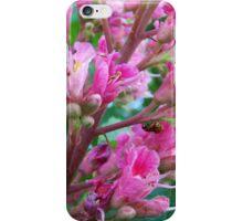 Chestnut Flower iPhone Case/Skin