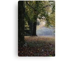 Soft Colours of Autumn - Mt Wilson NSW Australia Canvas Print