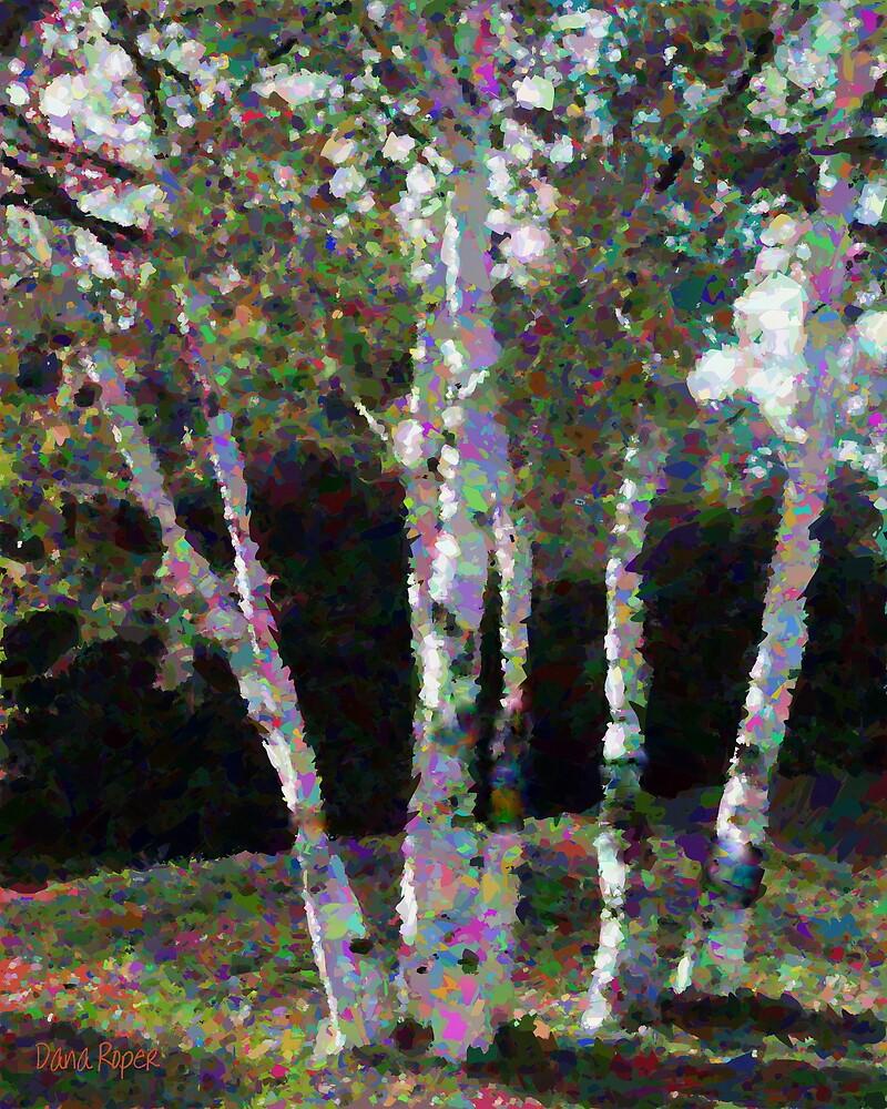 Quebec Trees by Dana Roper