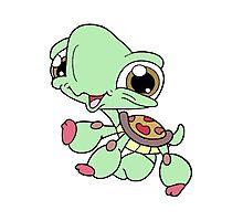 Littlest Pet Shop Turtle Photographic Print