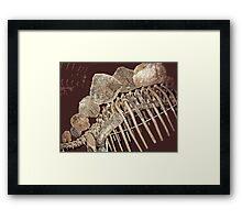 Stegosaurus Abstract Framed Print