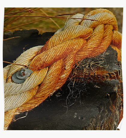 Rope Poster