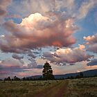 Mountain Afterglow by Kim Barton