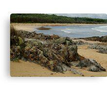 Colours of Cape Conran  Canvas Print
