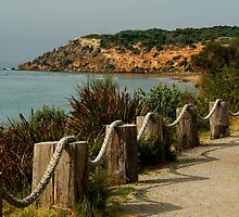 Bluff,Barwon Heads by Joe Mortelliti