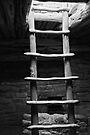 Sacred Steps by Leon Heyns