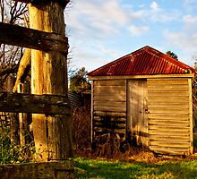 The Old Milk Shed_1 by Marian Moore