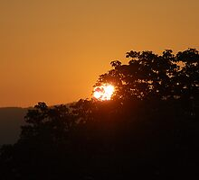 Virginia Sunset  by Mechelep