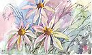 Daisies and weeds by Maree  Clarkson