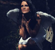 The Angel Prayed by Laurie Search