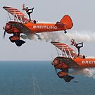 Wingwalkers by bubblebat