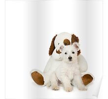 Westie Pup and Teddy Bear Poster