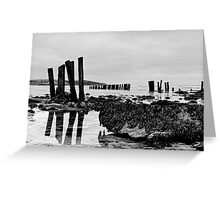 Coastal defences, Courtmacsharry Bay, West Cork, Ireland Greeting Card