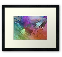 Amazing Dragonflies. Framed Print
