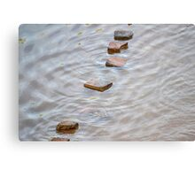 river landscape Canvas Print