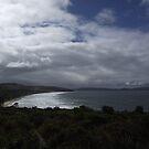 s.Tassie  coastline  by gaylene