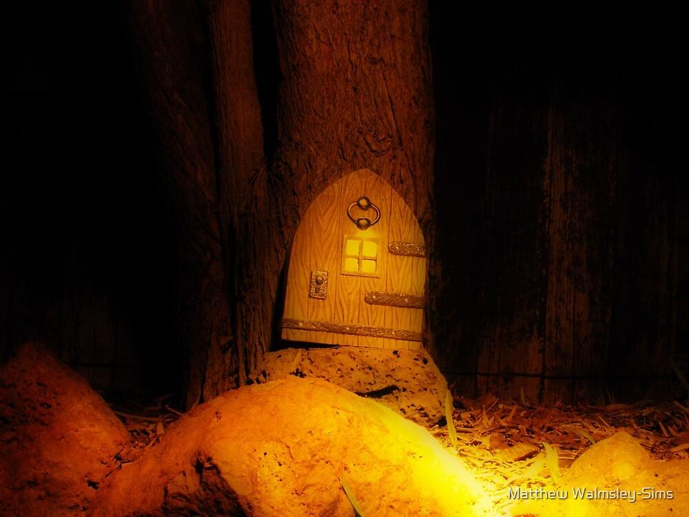 Magical Garden by Matthew Walmsley-Sims