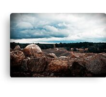 The View. Canvas Print