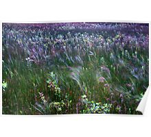 The Prairie Wind Painted The Picture Irwin State Nature Preserve  Poster