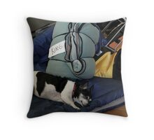 Dreaming of her Travels Throw Pillow
