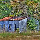Old Metal Shack  by venny