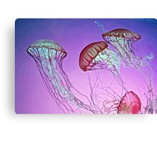 Dance of the Jellyfish Canvas Print