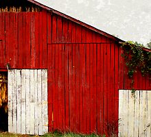 Tobacco Barn by Picture-It