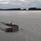 L'algue brune by NordicBlackbird