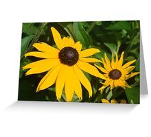 Flowers- Mackinac Island, Michigan Greeting Card