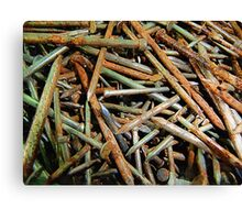 Symphony in Rusty Nails Canvas Print