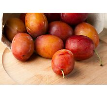 Fresh Plums Photographic Print