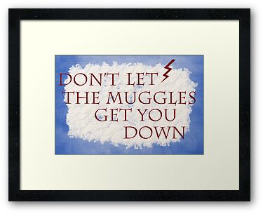 Don't Let The Muggles Get You Down! by RoomWithAMoose