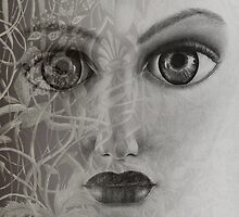 Veil by Cynthia Lund Torroll