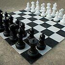 Chess for grownups:) by Rene Fuller