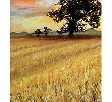 Harvest - Take Two by Corrina Holyoake