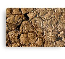 Dried Earth Metal Print