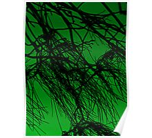 Branches Green Poster