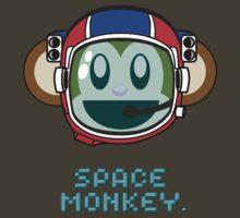 Space Monkey by Stevie B
