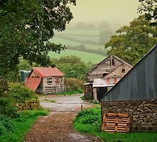 Misty fields and farm outbuildings by moor2sea