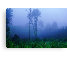 Foggy symphony in forest Canvas Print
