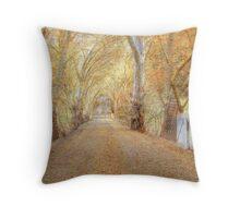 Colours of Autumn - Blakiston, The Adelaide Hills, SA Throw Pillow