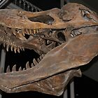 T-Rex close up by Gingersnaps1984