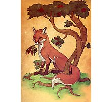 Commission: Red Fox Photographic Print